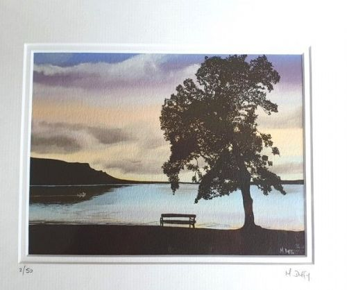 Michelle Duffy Lough Melvin Tree and Bench